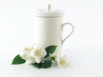 Jasmine. Series Flowers: Branch Of Fresh, white Jasmine Stock Images