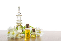 Jasmine aroma Stock Photography
