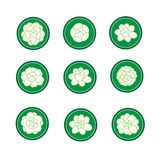 Jasmine banner in a green cirle vector Royalty Free Stock Photography