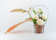Jasmine in Basket and Autumn Leaf. In Object with White background royalty free stock photos
