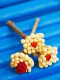 Jasmine Blossom Fotografia de Stock Royalty Free