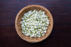 Jasmine blossoms in wicker basket. A pile of jasmine blossoms in wicker basket Royalty Free Stock Image