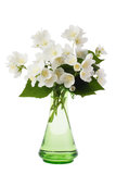 Jasmine bouquet in the vase Royalty Free Stock Photography