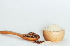 Jasmine Brown Rice stockbild