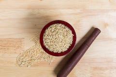 Jasmine Brown Rice Background/Jasmine Brow Rice/rå Jasmine Brown Rice i bunkebakgrund Royaltyfri Bild