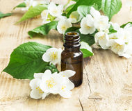 Jasmine Essential Oil Royalty Free Stock Photography