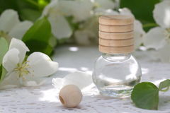 Jasmine Essential Oil Royalty Free Stock Photos