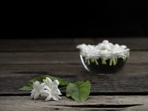 Jasmine floating in clear glass on wooden background royalty free stock photography