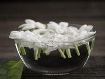 Jasmine floating in clear glass on wooden background stock photo
