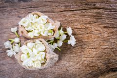 Jasmine flower in burlap bag on old wood background,select focus Royalty Free Stock Photo