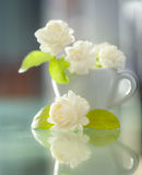 Jasmine flower on a cup. Royalty Free Stock Image