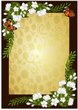 Jasmine flower frame template illustrations Royalty Free Stock Images