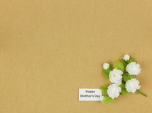 Jasmine flower - Mother day background Royalty Free Stock Photos