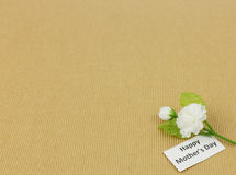 Jasmine flower - Mother day background Stock Photo