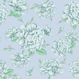 Jasmine flower pattern. Seamless vector illustration of flowers Stock Photos