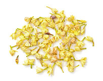 Jasmine flower tea Stock Photography