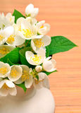 Jasmine flower in the vase on the wood Royalty Free Stock Image
