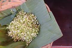Jasmine flower white for make garland Stock Images