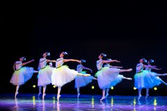 Jasmine Flowersï ¼ ˆcollectiveï ¼ ‰ - κινεζικό εθνικό μπαλέτο Στοκ φωτογραφίες με δικαίωμα ελεύθερης χρήσης