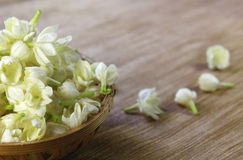 Jasmine flowers in a basket Stock Images