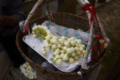 jasmine flowers in a basket for sale Royalty Free Stock Photography