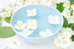 Jasmine flowers in a blue bowl for the spa Stock Photography
