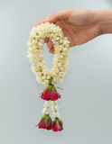 Jasmine garland and roses Royalty Free Stock Image