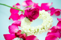 Jasmine garland and roses. For Mother day Royalty Free Stock Photography