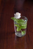Jasmine in a glass. With water Stock Image