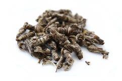 Jasmine green tea Royalty Free Stock Photos