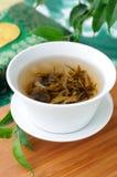 Jasmine green tea Stock Photos