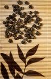 Jasmine Green Tea Stock Photo