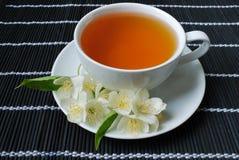 Jasmine green tea Royalty Free Stock Photography