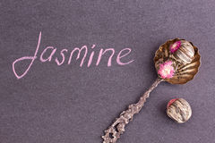 Jasmine green tea ball Stock Image