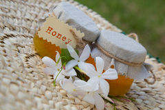 Jasmine honey Royalty Free Stock Photo