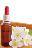 Jasmine oil. (essence or concentrate Stock Photos