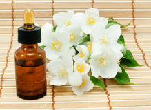 Jasmine oil Royalty Free Stock Images
