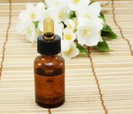 Jasmine oil. (essence or concentrate Royalty Free Stock Photos