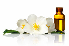 Jasmine Oil Stock Photography
