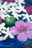 Jasmine, and pink Asarina, candles and blue water Royalty Free Stock Photography