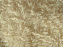 Jasmine rice Royalty Free Stock Photography