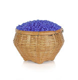 Jasmine rice coated with butterfly pea herb in basket on white b. Ackground Stock Photos