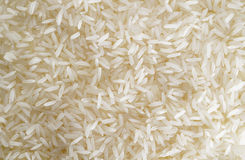 Jasmine rice Royalty Free Stock Photography