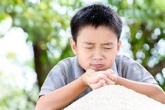 Jasmine rice in kid hand Royalty Free Stock Photos