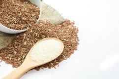 Jasmine rice and rice berry Stock Photo