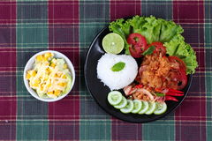 Jasmine rice with spicy fried chicken salad (Khao Yum Kai Zap in Thai) served mixed vegetales salad. Jasmine rice with spicy fried chicken salad (Khao Yum Kai Royalty Free Stock Photography