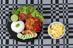 Jasmine rice with spicy fried chicken salad (Khao Yum Kai Zap in Thai) served mixed vegetales salad. Jasmine rice with spicy fried chicken salad (Khao Yum Kai Royalty Free Stock Image