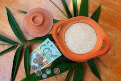 Jasmine rice with coins and Thai bank notes Royalty Free Stock Photography