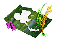 Jasmine Rice of Thailand's Map Shape Royalty Free Stock Images