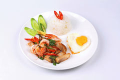 Jasmine rice topped stir - fried spicy basil with meat. Royalty Free Stock Photo